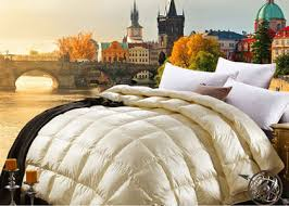 All Seasons Duvets Duck Down Quilt On Sales Quality Duck Down Quilt Supplier
