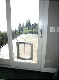 Exterior Cat Door Cat Door For Window Door Door Insert A Cat Door For Window