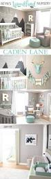 Ideas For Boys Bedrooms by 25 Best Adventure Nursery Ideas On Pinterest Travel Theme
