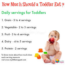 how much should a toddler eat food and babies