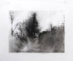 drawings on mylar laurie steen