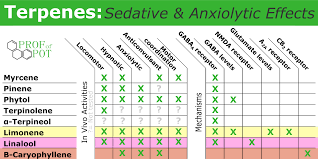 sedative and anxiolytic effects of cannabis terpenes sedative and anxiolytic effects of cannabis terpenes animal and mechanistic studies
