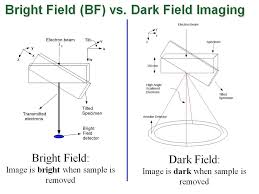 dark field microscopy bright and dark field microscopy what different between dark