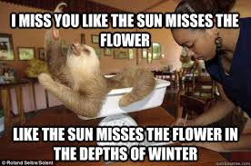 I Miss You Funny Meme - 28 very funny flower meme images of all the time