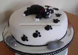 Coolest Cat Cake Design