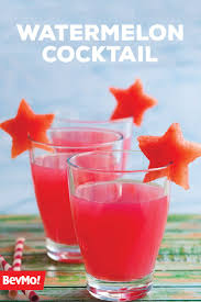 222 best refreshing summer cocktails images on pinterest