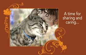 free cat thanksgiving ecards divascuisine