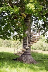strap this spiral staircase onto any tree no tools needed
