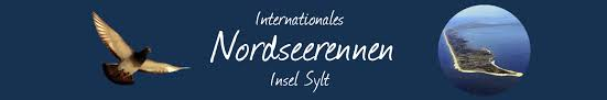 international north sea island sylt 2015 international north sea