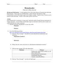 biology macromolecule review worksheet