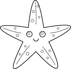 11 star fish coloring pages print color craft