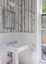 birch tree wallpaper powder room transitional with towel ring nbsp