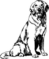balto coloring pages 25 best wolf coloring pages images on pinterest drawings