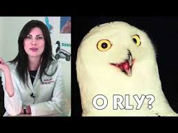 I Know Your Meme - know your meme o rly youtube