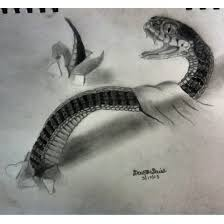 pencil sketches of snakes the 25 best ideas about snake drawing