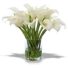 silk calla lilies flowers white green 1 polyvore
