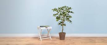 artificial trees custom made trees to your specification by