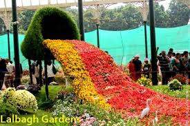 which city is known as of flowers in india flowers ideas