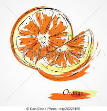 drawn orange hand drawn pencil and in color drawn orange hand drawn