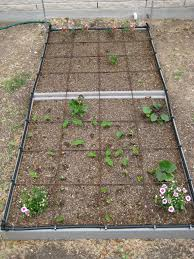 square foot use raised garden beds to battle deer and dirt the how do gardener