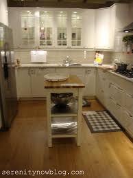 Ikea Kitchen Ideas Pictures Emejing Ikea Kitchen Design Ideas Photos Rugoingmyway Us