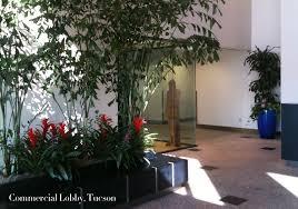 gallery lulu pokinghorn the plant lady interior plant design