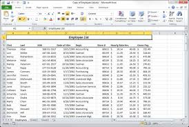 beginner u0027s guide to excel 2010 data filters pluralsight