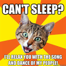 Relax Meme - can t sleep i ll relax you cat meme cat planet cat planet
