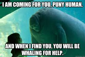 Whaling Meme - i am coming for you puny human and when i find you you will be