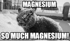 Cat Cocaine Meme - cat cocaine memes on memegen