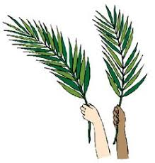 palms for palm sunday celebrate with palms on this important day clip library
