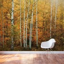 Murals Custom Hand Painted Wall Murals By Art Effects Autumn Birch Tree Forest Wall Mural