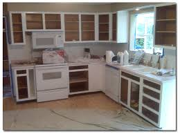 Best Deal On Kitchen Cabinets Professional Kitchen Cabinet Painting Akioz Painters For Cabinets