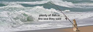 Fish In The Sea Meme - plenty of fish in the sea they said memes and comics