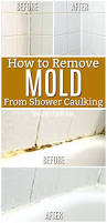 Bathroom Grout Cleaner Bathtub Mold Cleaner Bathroom Mold Pictures Grout Mould Cleaner