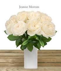bulk flowers online spray roses 40cm pack 120 stems wedding events sprays and