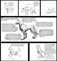 How To Draw A Flag How To Draw Real Feral Wolves By Corrupttempest On Deviantart