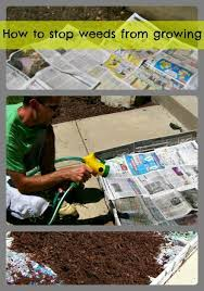How To Remove Weeds From Patio How To Stop Weeds From Growing In You Flower Beds And Landscaping