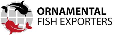 statistics ornamental fish exporters