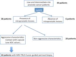 transperineal biopsies of mri detected aggressive index lesions in