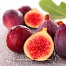 fruit edible 100pcs figs seeds edible fruit bonsai tree seeds figs