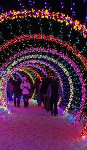 outdoor christmas light displays amazing style motivation backyard