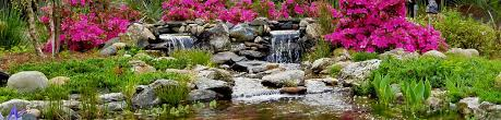 Green Side Up Landscaping by Custom Water Features Main Line Philadelphia Chester County