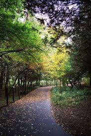 waukesha city halloween midwestern city traipsing through the trees at retzer nature