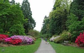 Botanical Gardens Seattle Washington Park Arboretum A Unique Experience In Seattle