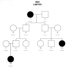 pedigree chart showing limited inheritance example genetics