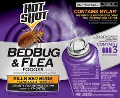 Killing Bed Bugs In Clothes Amazon Com Shot 95911 Bedbug And Flea Fogger Shot Bed