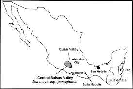 Acapulco Mexico Map by In This Issue