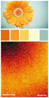 Sunflower Rugs 17 Best Images About Presentation On Pinterest