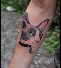 15 frisky feline tattoos u2013 staciemayer com